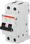 Автоматич.выкл-ль 2-полюсный S202 B63